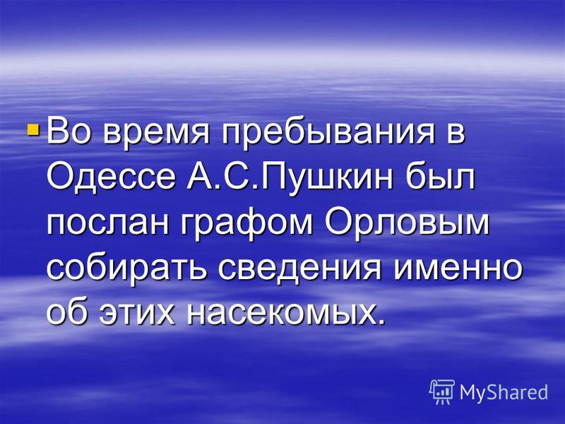 Во время пребывания в Одессе А.С.Пушкин был послан графом Орловым собирать сведения именно об этих насекомых. Во время пребывания в Одессе А.С.Пушкин был послан графом Орловым собирать сведения именно об этих насекомых.