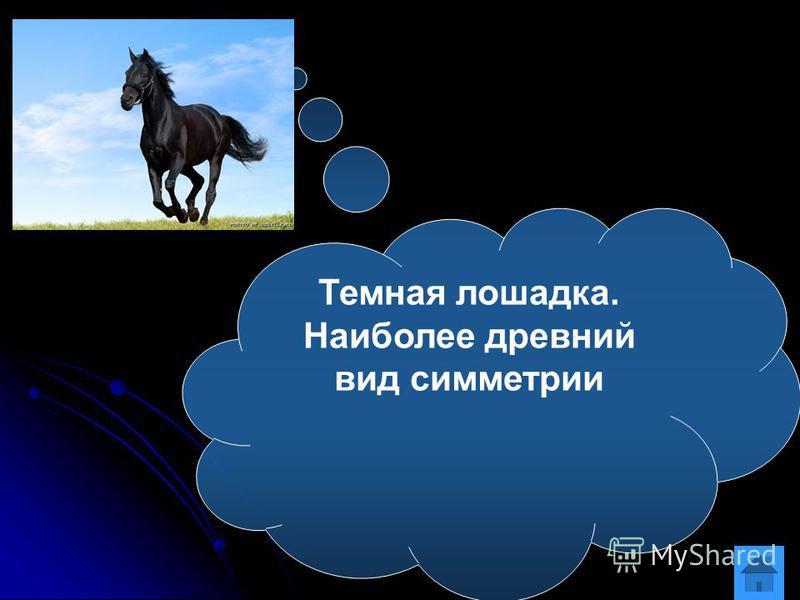 Темная лошадка. Наиболее древний вид симметрии