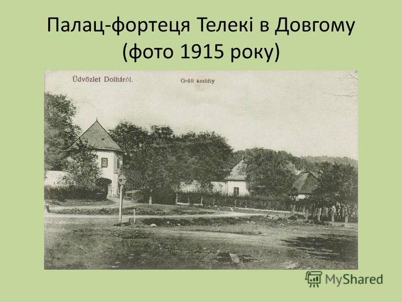 Палац-фортеця Телекі в Довгому (фото 1915 року)