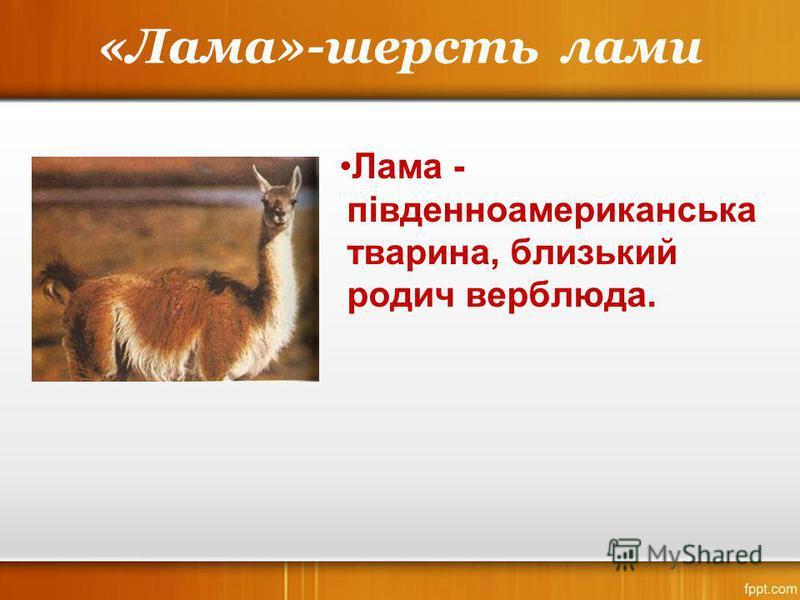«Лама»-шерсть лами Лама - південноамериканська тварина, близький родич верблюда.