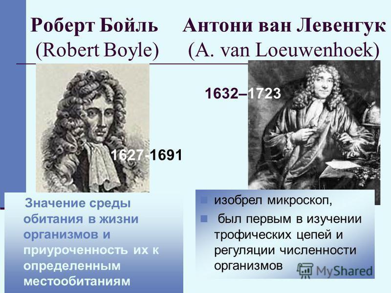 10 Роберт Бойль (Robert Boyle) 1627-1691 изобрел микроскоп, был первым в изучении трофических цепей и регуляции численности организмов Значение среды обитания в жизни организмов и приуроченность их к определенным местообитаниям Антони ван Левенгук (A
