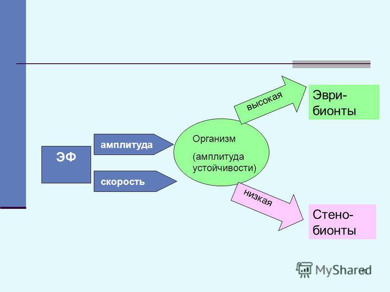 10 ЭФ Организм (амплитуда устойчивости) амплитуда скорость высокая низкая Эври- бионты Стено- бионты