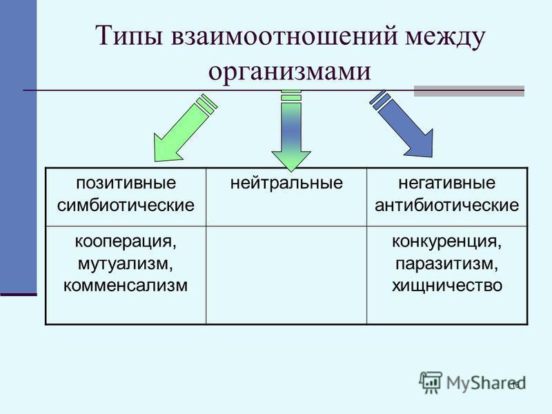 16 Типы взаимоотношений между организмами позитивные симбиотические нейтральные негативные антибиотические кооперация, мутуализм, комменсализм конкуренция, паразитизм, хищничество