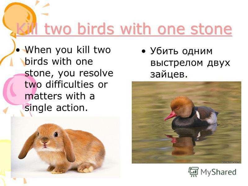 Kill two birds with one stone Kill two birds with one stone When you kill two birds with one stone, you resolve two difficulties or matters with a single action. Убить одним выстрелом двух зайцев.