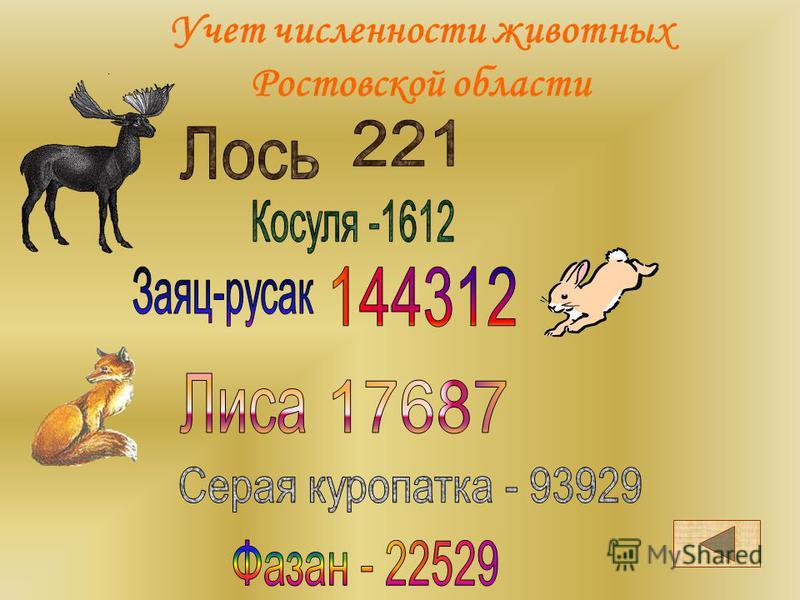 Животный мир Ростовской области