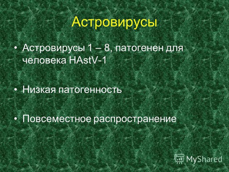 Астровирусы Астровирусы 1 – 8, патогенен для человека НАstV-1 Низкая патогенность Повсеместное распространение