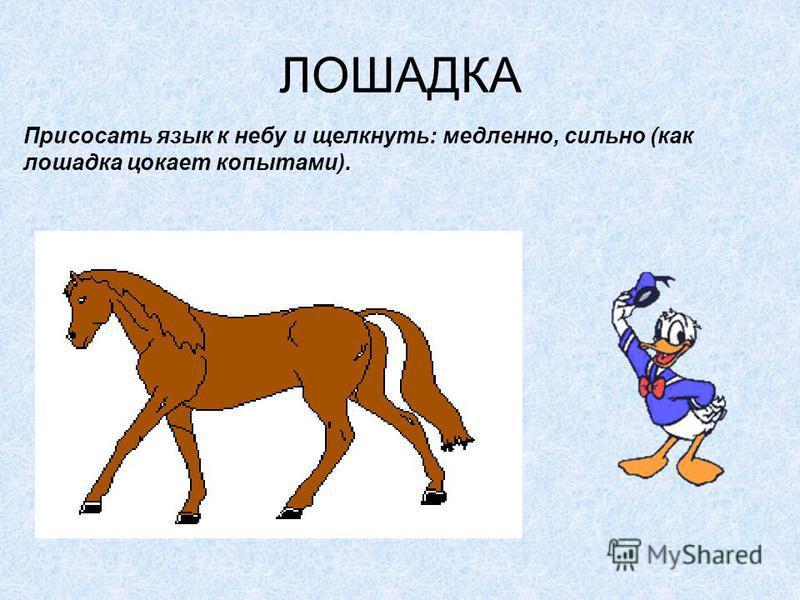 ЛОШАДКА Присосать язык к небу и щелкнуть: медленно, сильно (как лошадка цокает копытами).