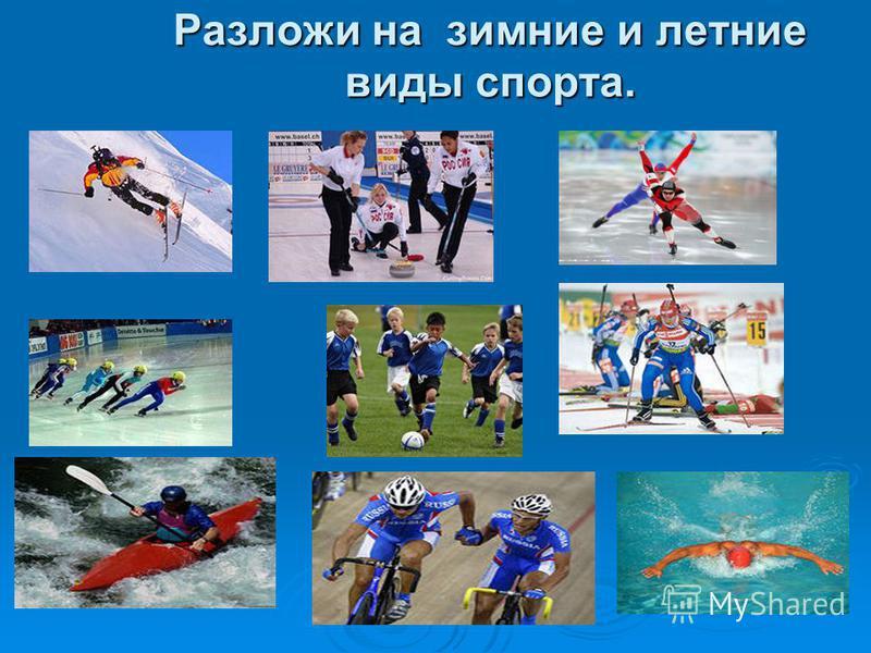 Разложи на зимние и летние виды спорта.