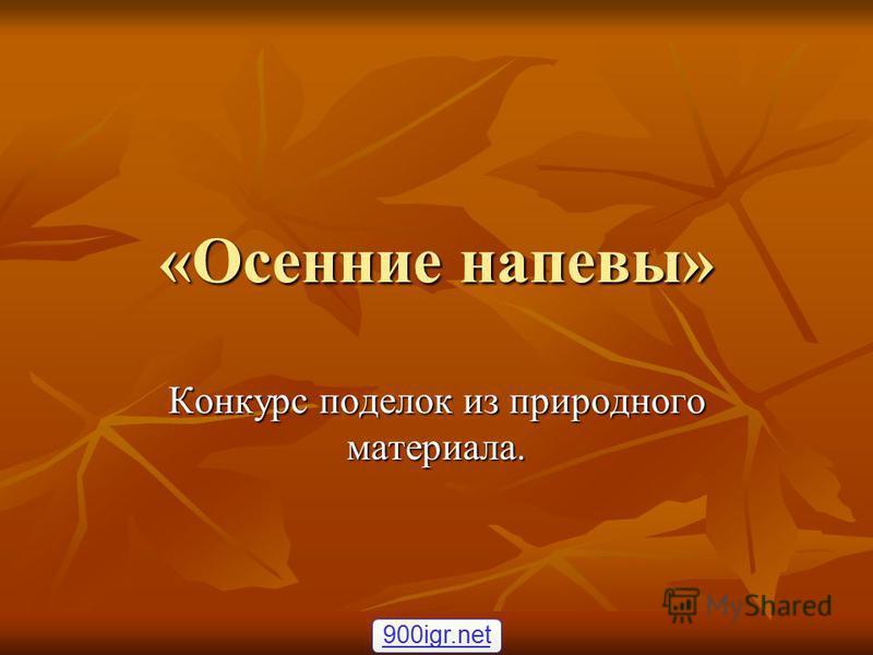 «Осенние напевы» Конкурс поделок из природного материала. 900igr.net