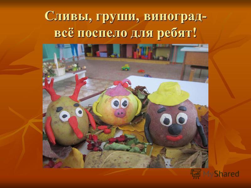 Сливы, груши, виноград- всё поспело для ребят!