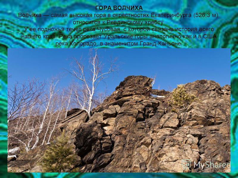 ГОРА ВОЛЧИХА Волчиха самая высокая гора в окрестностях Екатеринбурга (526,3 м), относится к Ревдинскому хребту. У ее подножья течет река Чусовая, c которой связана история всего нашего края. Река прорезает Уральские горы аналогично как и в США река К