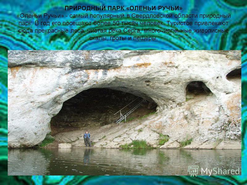 ПРИРОДНЫЙ ПАРК «ОЛЕНЬИ РУЧЬИ» «Оленьи Ручьи» - самый популярный в Свердловской области природный парк. В год его посещают более 50 тысяч человек. Туристов привлекают сюда прекрасные леса, чистая река Серга, многочисленные живописные скалы, гроты и пе