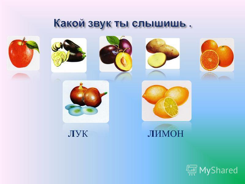 РЕПА ПОМИДОР