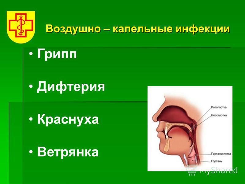 Воздушно – капельные инфекции Грипп Дифтерия Краснуха Ветрянка