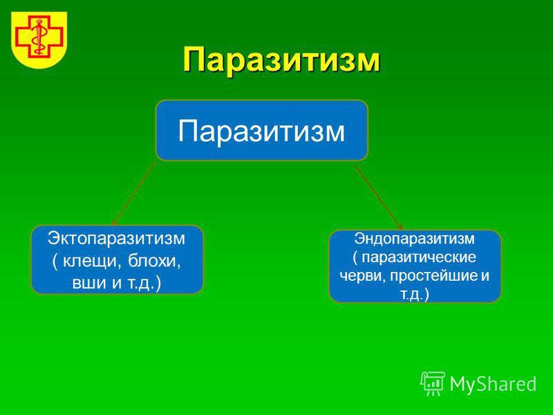 Паразитизм Паразитизм Эктопаразитизм ( клещи, блохи, вши и т.д.) Эндопаразитизм ( паразитические черви, простейшие и т.д.)