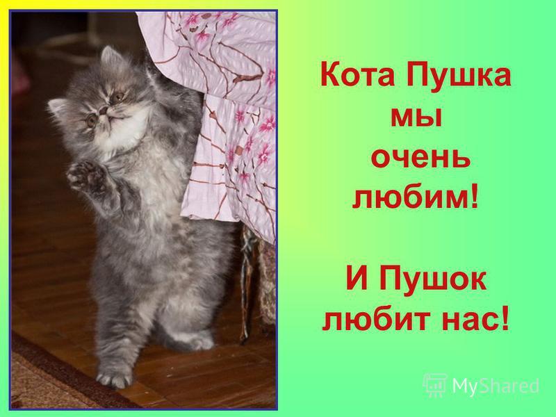 Кота Пушка мы очень любим! И Пушок любит нас!