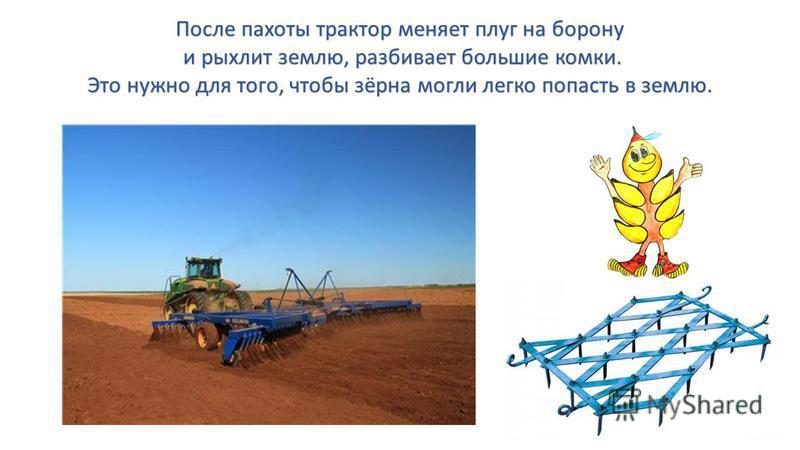 После пахоты трактор меняет плуг на борону и рыхлит землю, разбивает большие комки. и рыхлит землю, разбивает большие комки. Это нужно для того, чтобы зёрна могли легко попасть в землю.