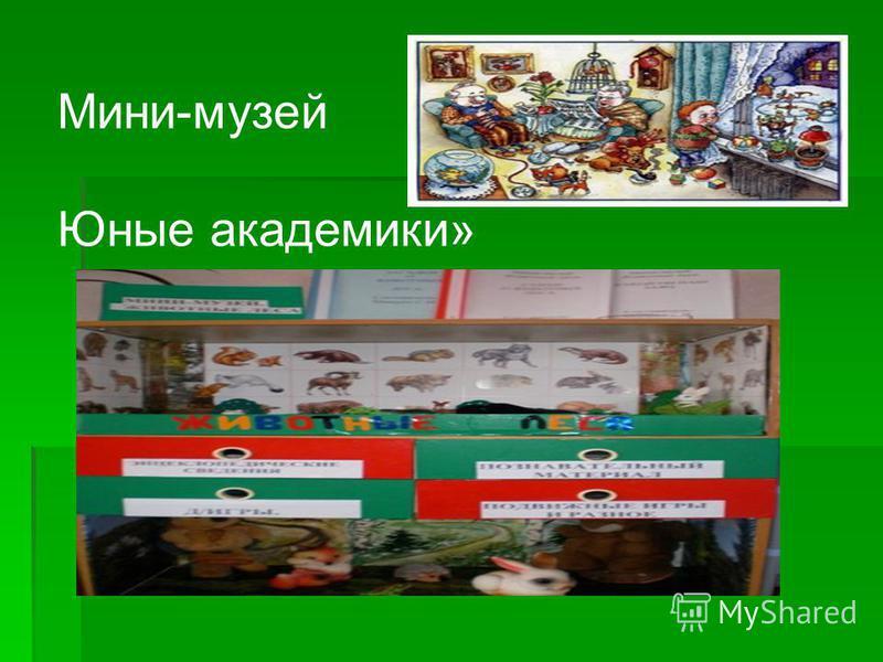 Мини-музей Юные академики»