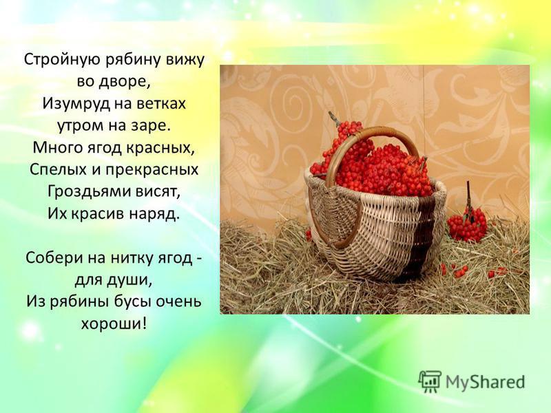 Стройную рябину вижу во дворе, Изумруд на ветках утром на заре. Много ягод красных, Спелых и прекрасных Гроздьями висят, Их красив наряд. Собери на нитку ягод - для души, Из рябины бусы очень хороши!