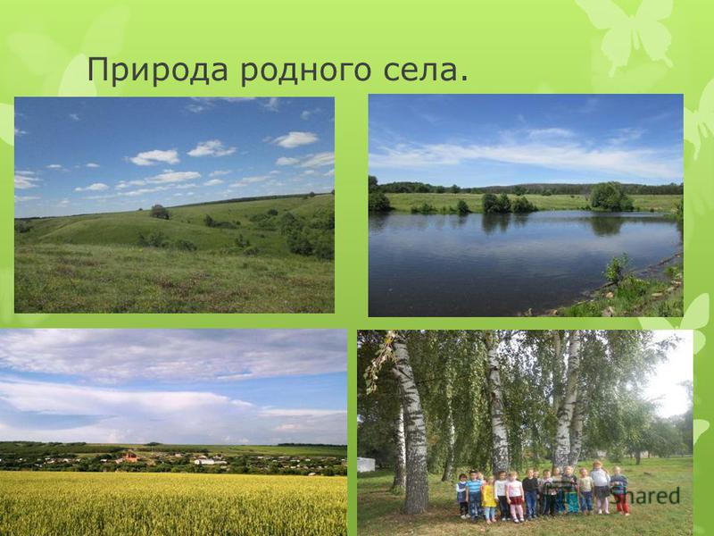 Природа родного села.