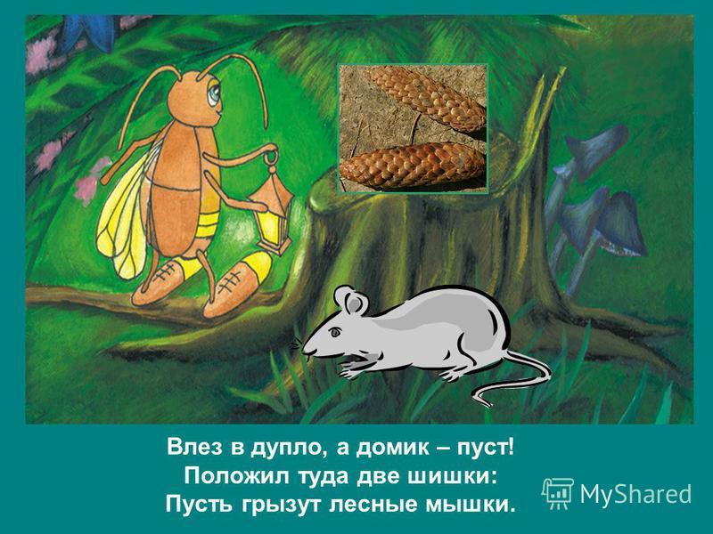 Влез в дупло, а домик – пуст! Положил туда две шишки: Пусть грызут лесные мышки.