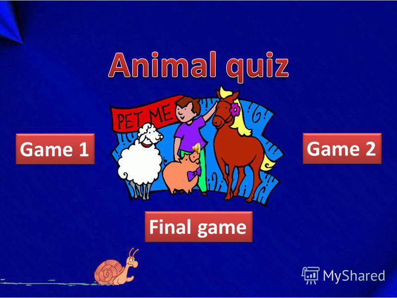 Final game Game 2 Game 1