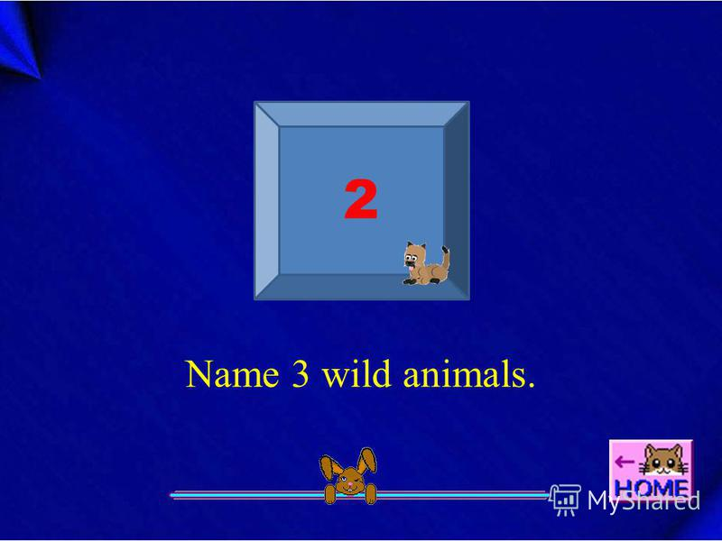 Name 3 wild animals. 2