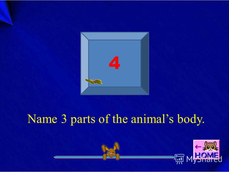 4 Name 3 parts of the animals body.