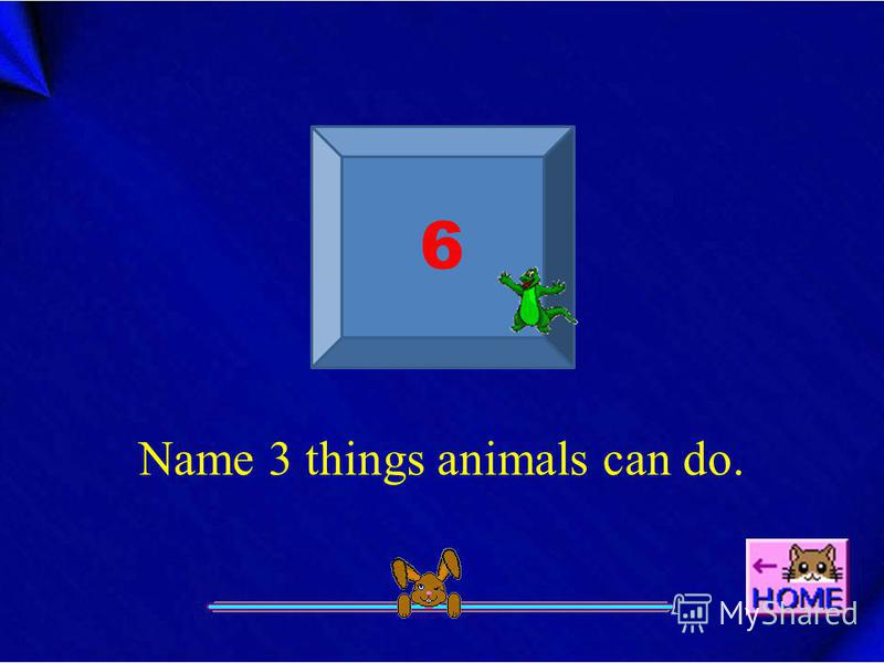 6 Name 3 things animals can do.