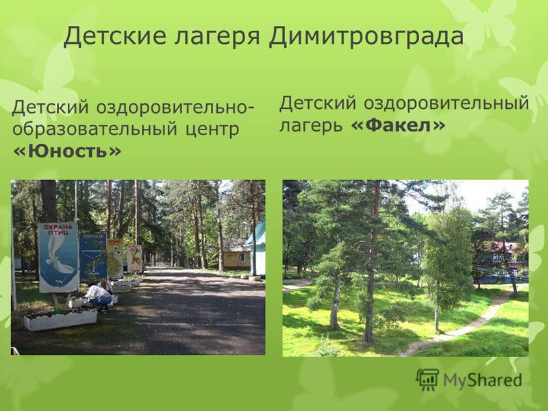 Детские лагеря Димитровграда Детский оздоровительно- образовательный центр «Юность» Детский оздоровительный лагерь «Факел»