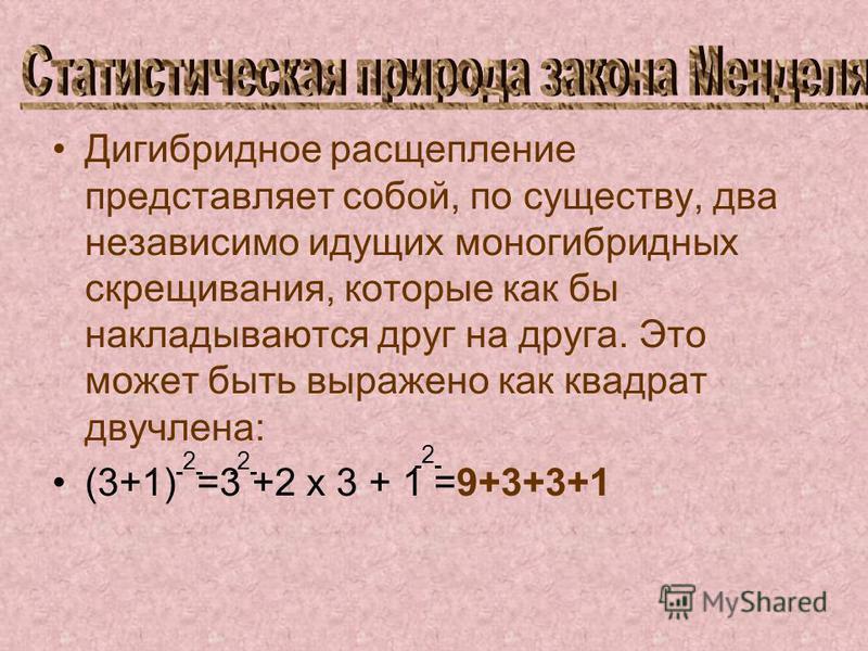 Дигибридное расщепление представляет собой, по существу, два независимо идущих моногибридных скрещивания, которые как бы накладываются друг на друга. Это может быть выражено как квадрат двучлена: (3+1) =3 +2 х 3 + 1 =9+3+3+1 2 2 2