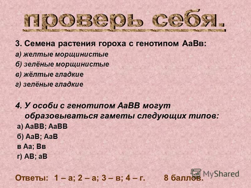 3. Семена растения гороха с генотипом Аа Вв: а) желтые морщинистые б) зелёные морщинистые в) жёлтые гладкие г) зелёные гладкие 4. У особи с генотипом АаВВ могут образовываться гаметы следующих типов: а) АаВВ; АаВВ б) АаВ; АаВ в Аа; Вв г) АВ; аВ Ответ