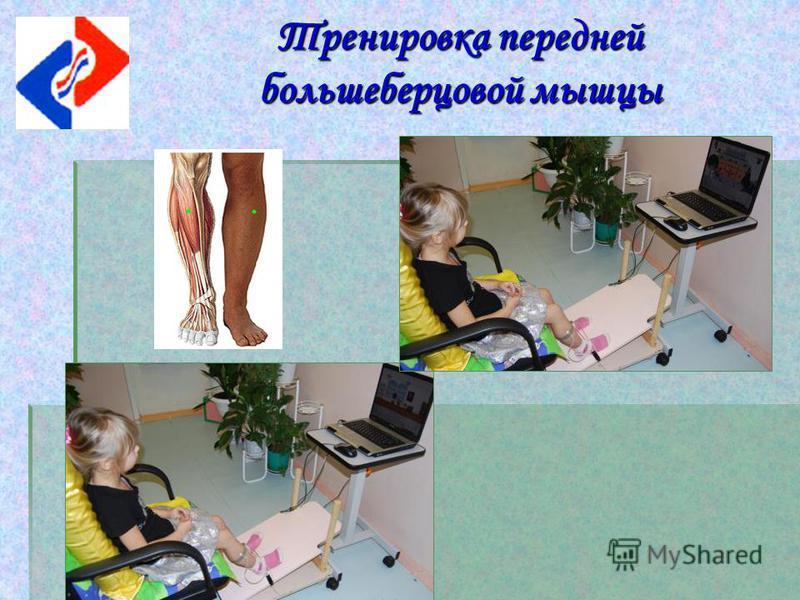 Тренировка передней большеберцовой мышцы