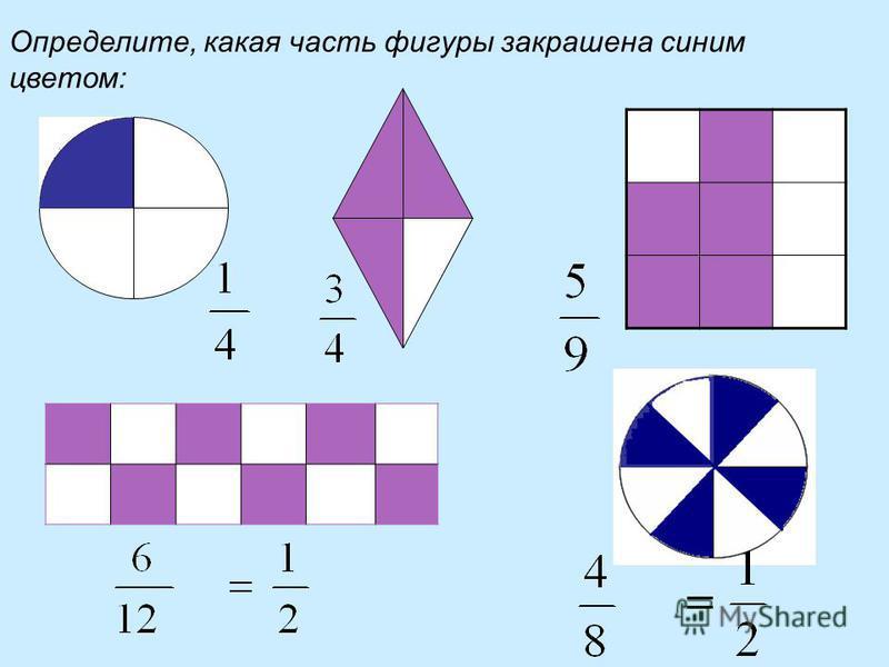 Определите, какая часть фигуры закрашена синим цветом: