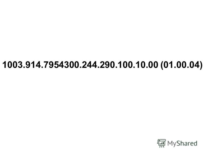 1003.914.7954300.244.290.100.10.00 (01.00.04)