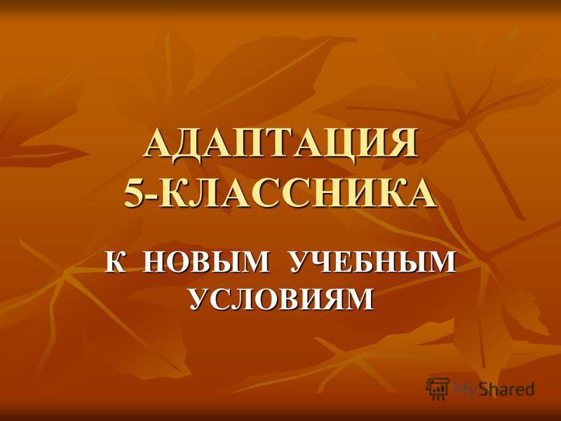 АДАПТАЦИЯ 5-КЛАССНИКА К НОВЫМ УЧЕБНЫМ УСЛОВИЯМ