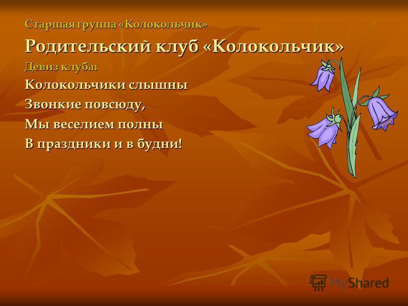 Старшая группа «Рябинка» Родительский клуб «Рябинка» Девиз клуба: Словно ягоды рябины Мы дружны и неделимы!
