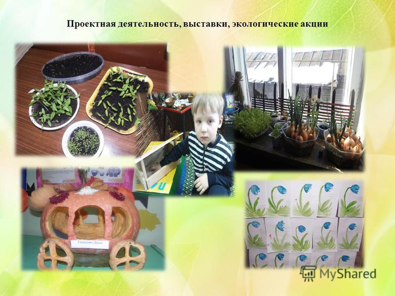Проектная деятельность, выставки, экологические акции