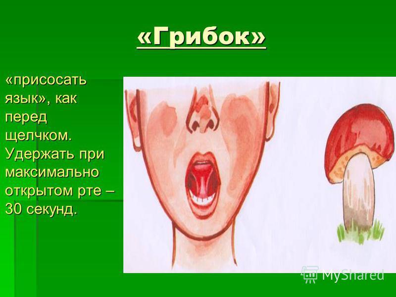«Грибок» «присосать язык», как перед щелчком. Удержать при максимально открытом рте – 30 секунд. «присосать язык», как перед щелчком. Удержать при максимально открытом рте – 30 секунд.
