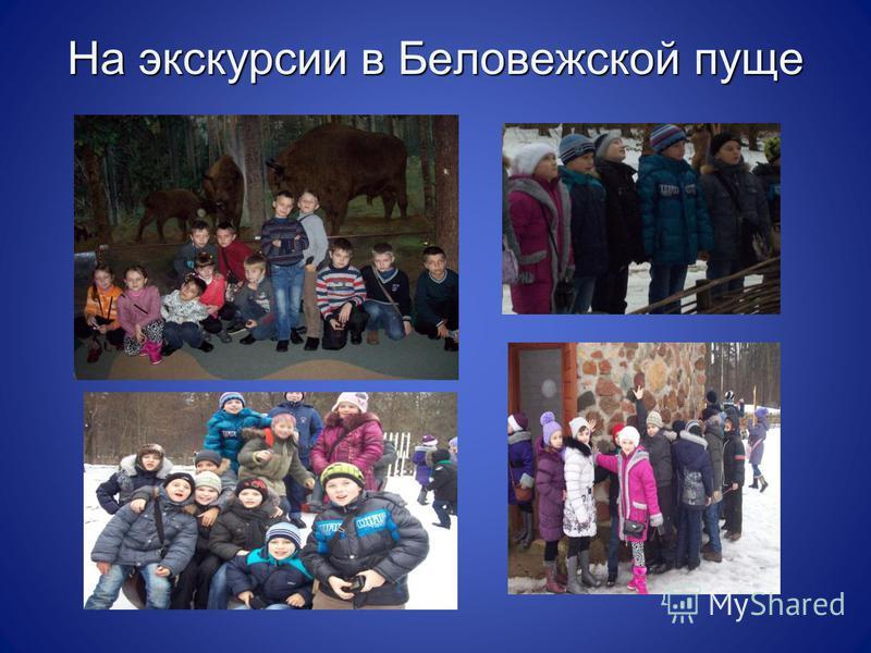 На экскурсии в Беловежской пуще
