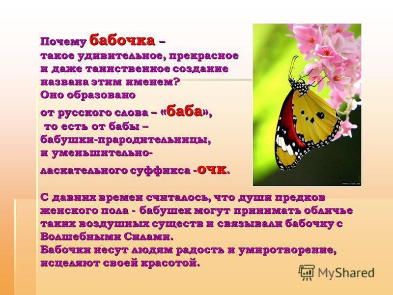 Почему бабочка – такое удивительное, прекрасное и даже таинственное создание названа этим именем? Оно образовано от русского слова – «баба», то есть от бабы – бабушки-прародительницы, и уменьшительно- ласкательного суффикса - очк. С давних времен счи
