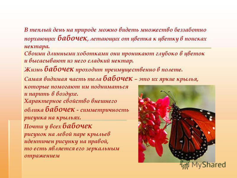 В теплый день на природе можно видеть множество беззаботно порхающих бабочек, летающих от цветка к цветку в поисках нектара. Своими длинными хоботками они проникают глубоко в цветок и высасывают из него сладкий нектар. Жизнь бабочек проходит преимуще