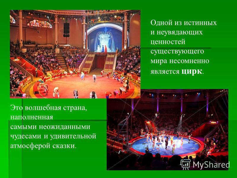 Одной из истинных и неувядающих ценностей существующего мира несомненно является цирк. Это волшебная страна, наполненная самыми неожиданными чудесами и удивительной атмосферой сказки.