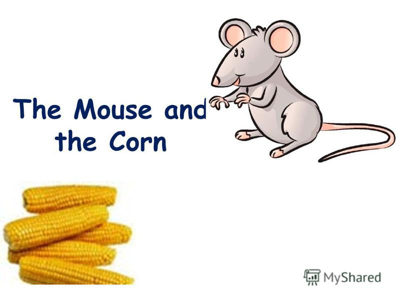 The Mouse and the Corn