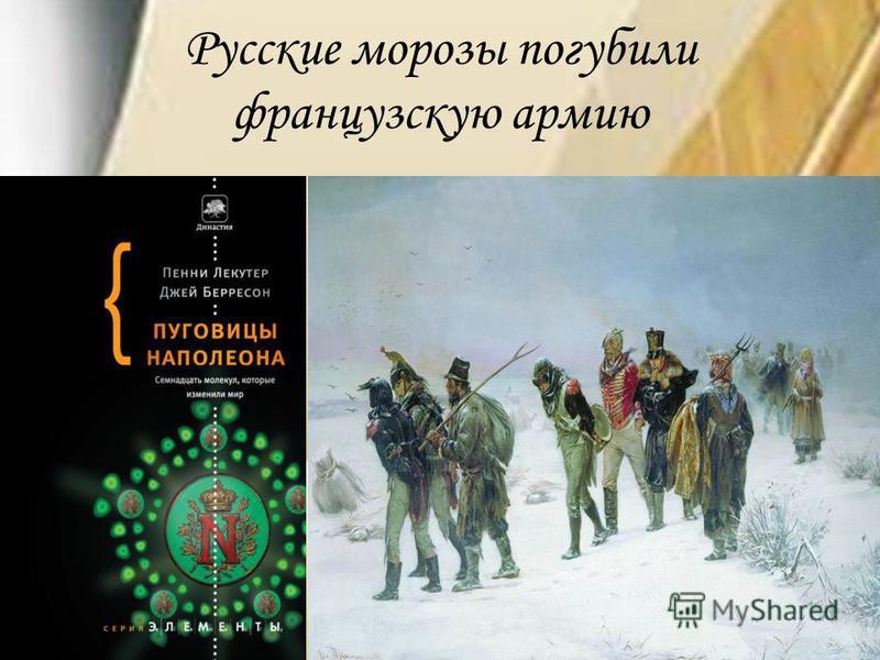 Русские морозы погубили французскую армию