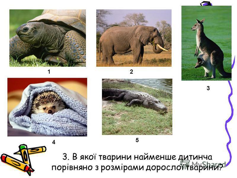 3. В якої тварини найменше дитинча порівняно з розмірами дорослої тварини? 12 3 4 5