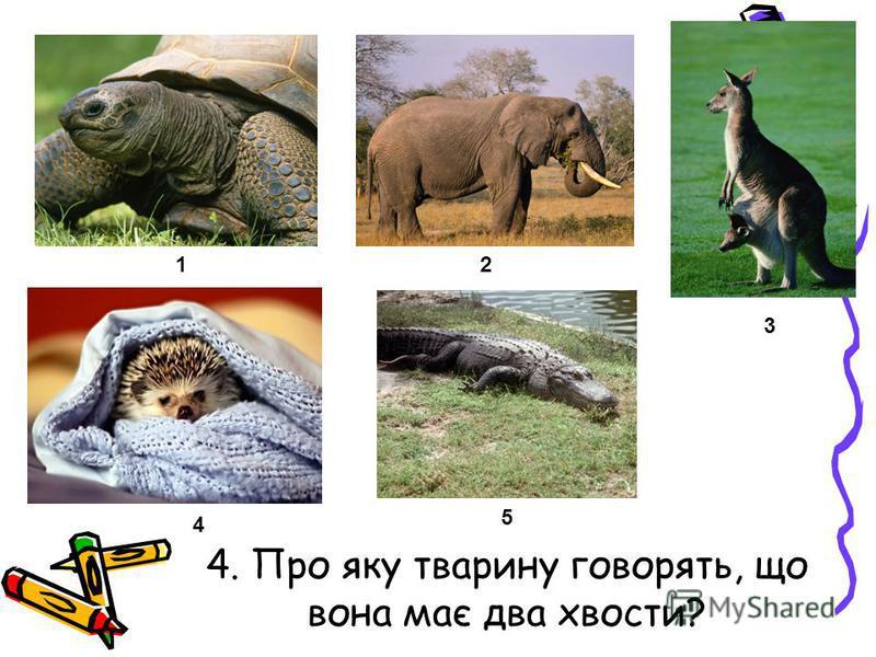 4. Про яку тварину говорять, що вона має два хвости? 12 3 4 5