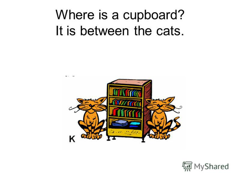 Where is a cupboard? It is between the cats.