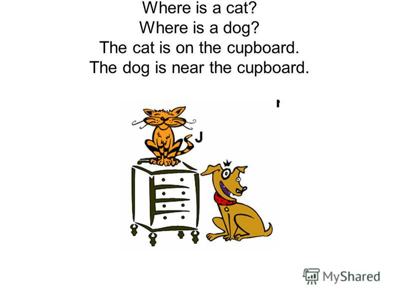 Where is a cat? Where is a dog? The cat is on the cupboard. The dog is near the cupboard.