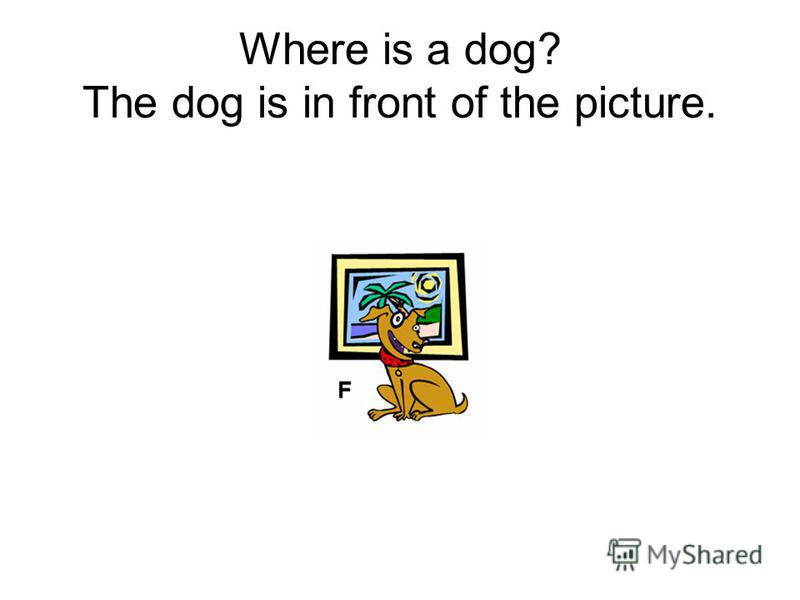 Where is a dog? The dog is in front of the picture.